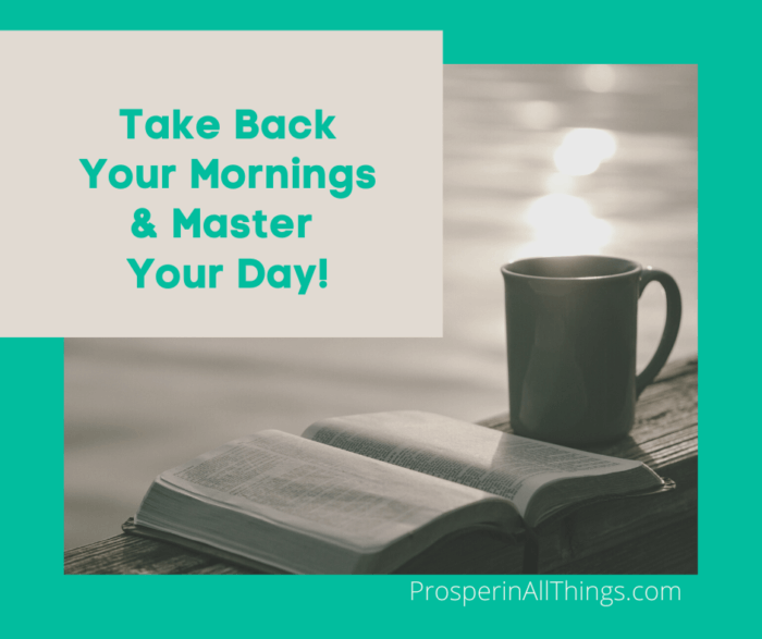 Take Back Your Mornings & Master Your Day